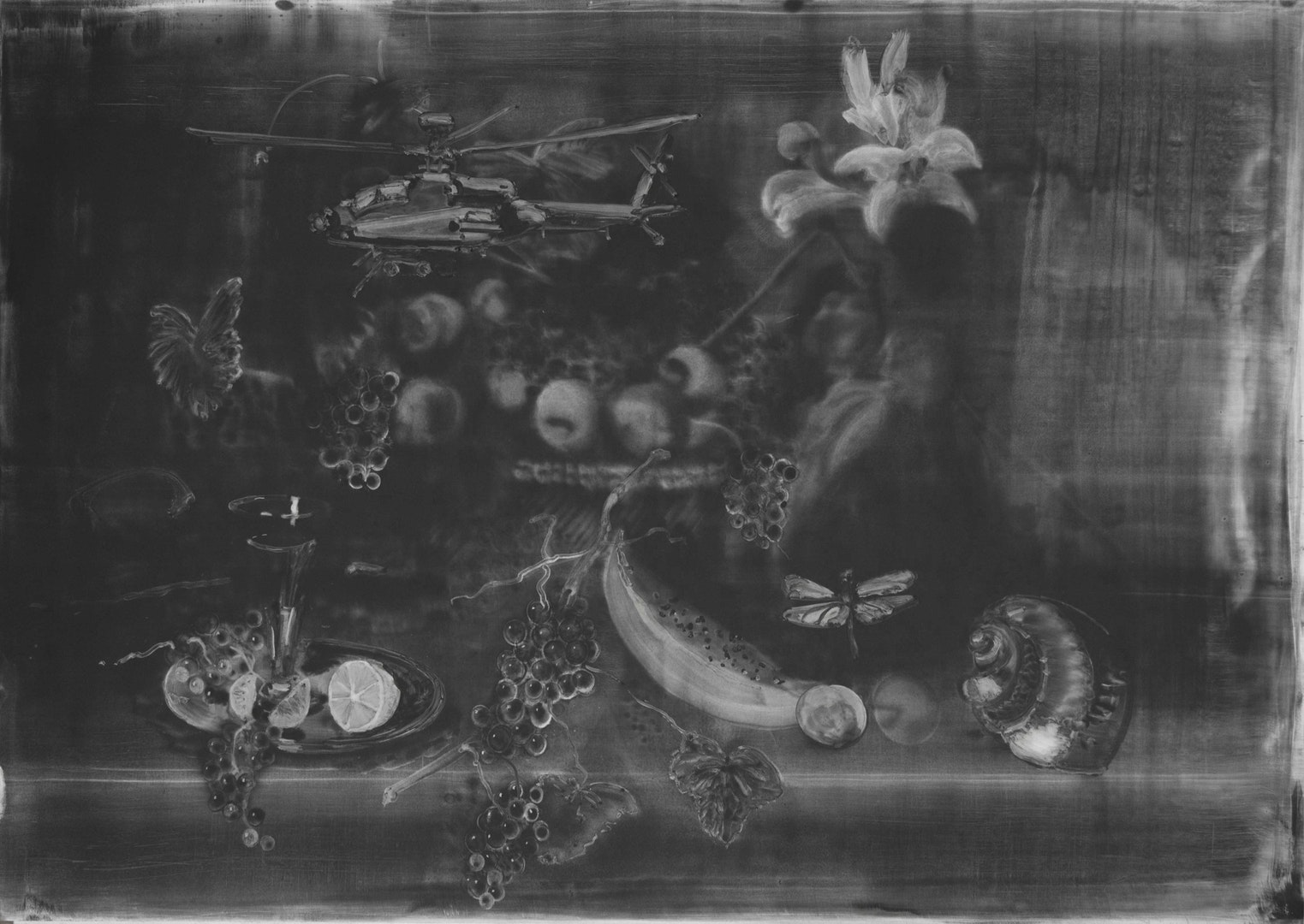 'Still Life with Dragonfly', Christopher Cook, graphite and resin on paper, 72 x 102 cm