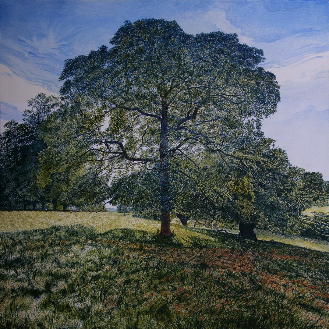 'In the Shadow of a Calke Park Tree', Mark Langley, Oil on canvas, 80 x 80 cm