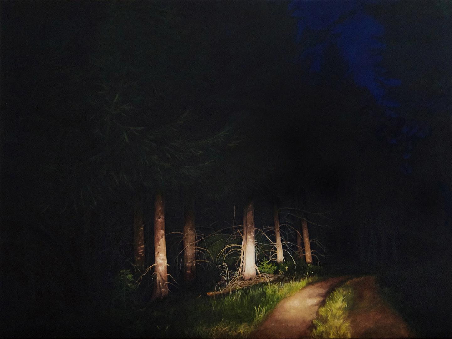 'Entre chien et loup 2', Natalie Dowse, Oil on canvas, 90 x 120 x 3 cm