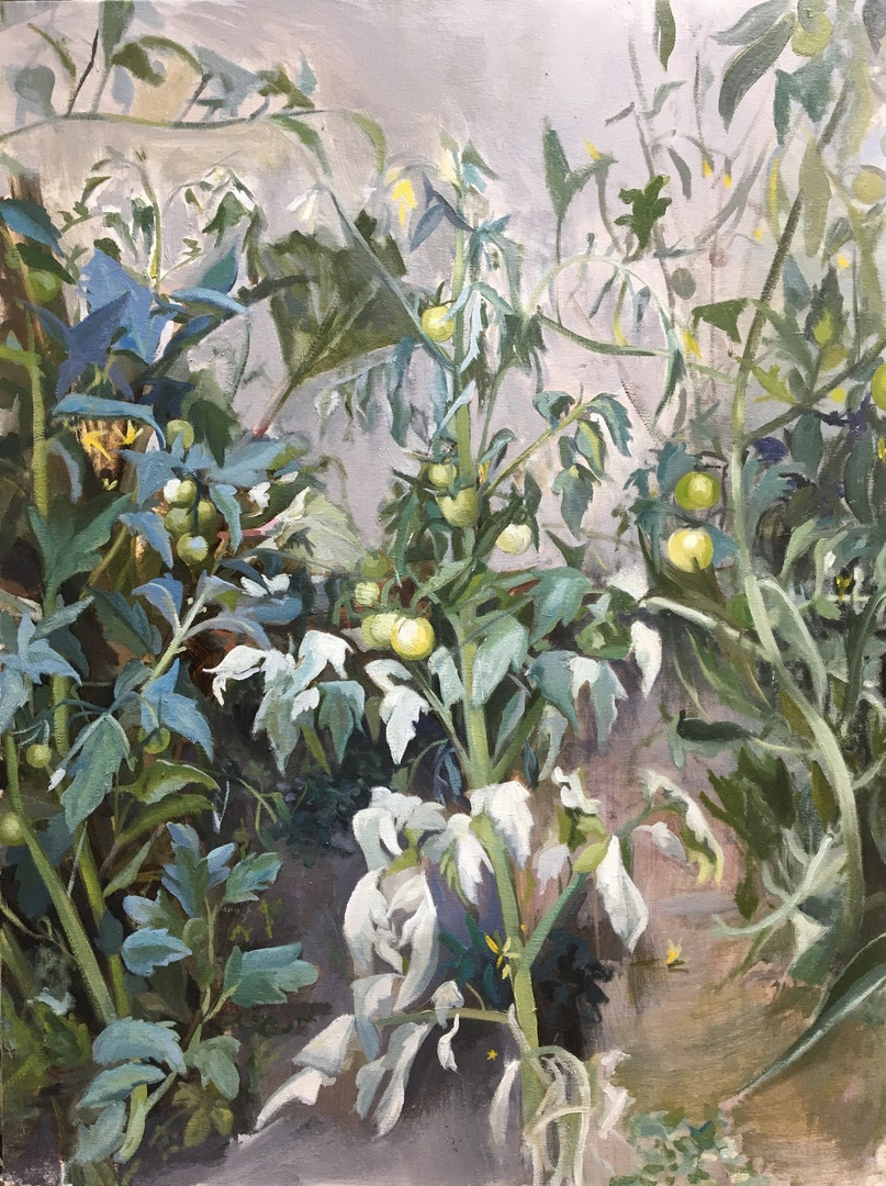 'Vines', Ollie Tuck, Oil on canvas, 80 x 60 x 2 cm