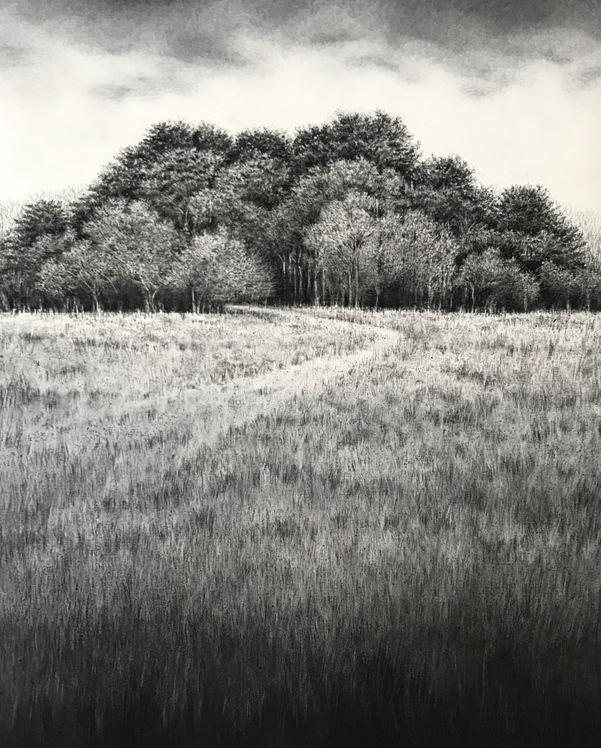 'February Group', Sorca O'Farrell, charcoal on paper, 76 x 56 cm