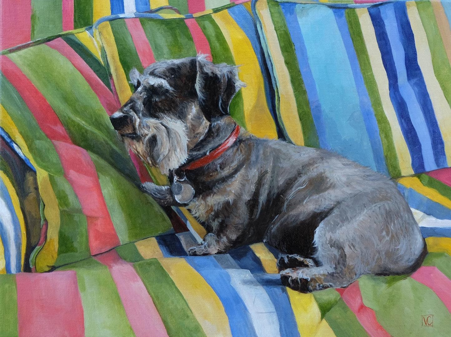 'Max on the Technicolour Sofa' Virginia Cayzer, Oil on linen, 30 x 40 cm