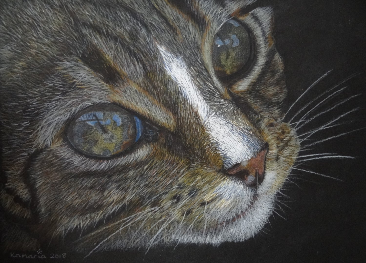 'Cats Eyes', Karen Hunt, Pencil on paper, 23 x 30 cm