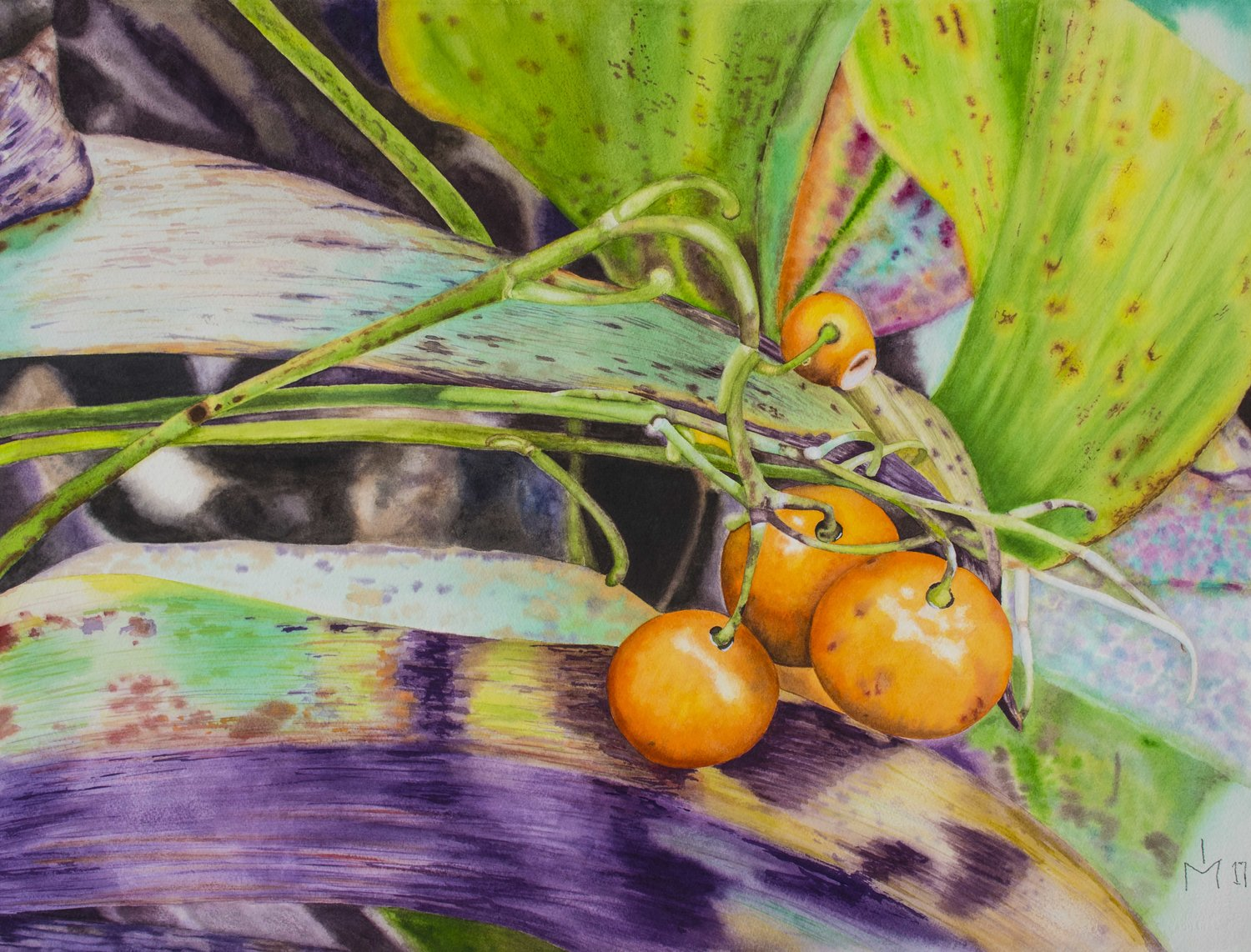 'Lily of the valley berries', Eduvigis (Inma) Medina, Watercolour on paper, 73 x 57 cm