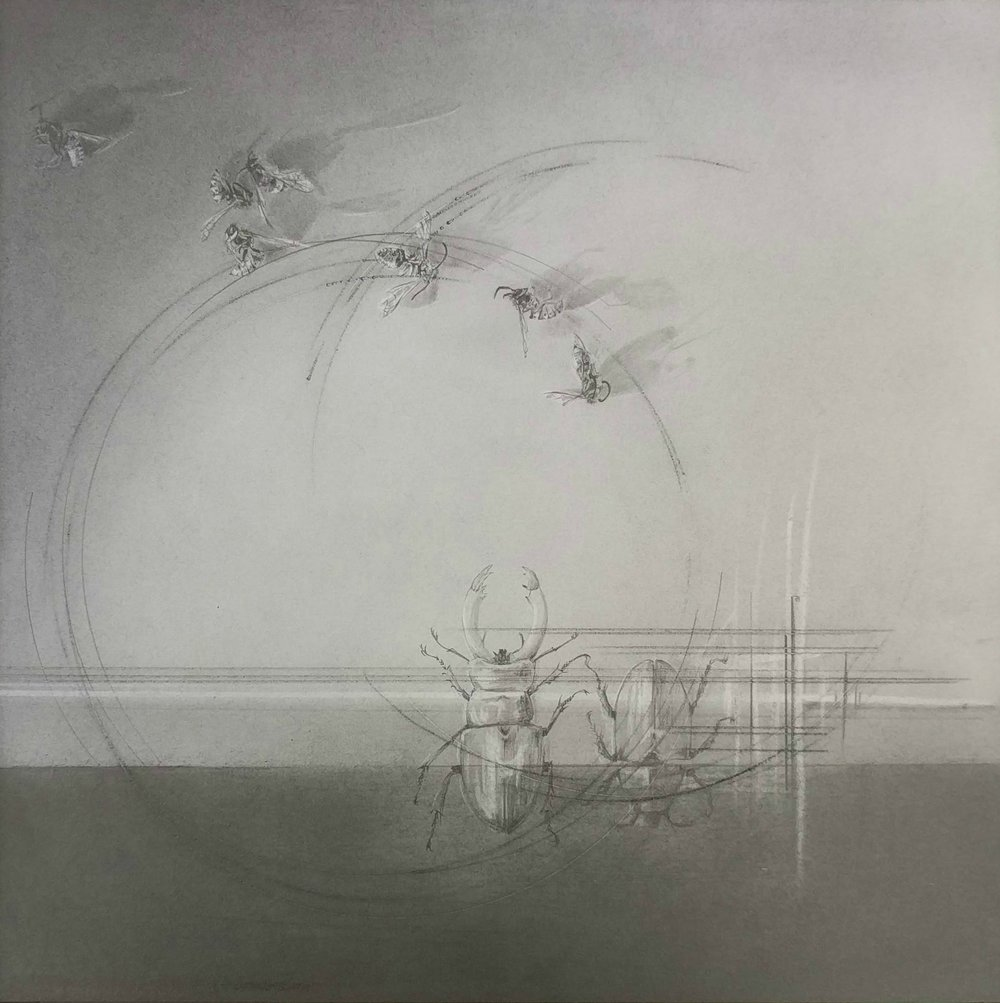 'Flight Path ix', Louisa Crispin, Graphite on bristol, 22 x 22 cm