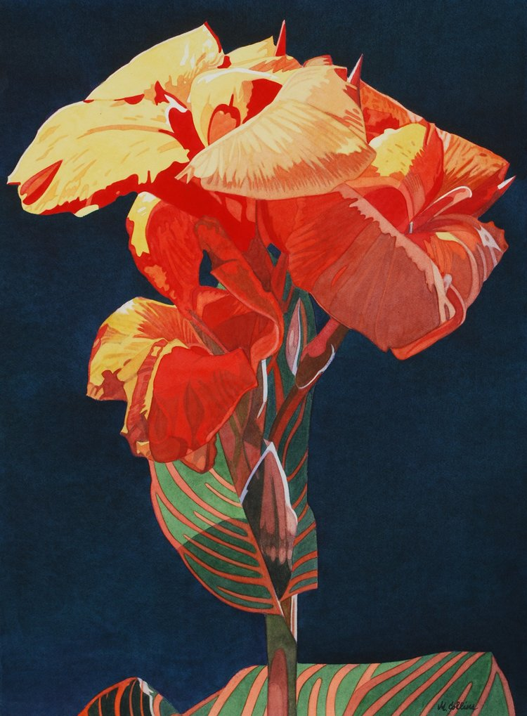 'Canna II', Marjorie Collins, Watercolour, 97 x 75 x 2 cm