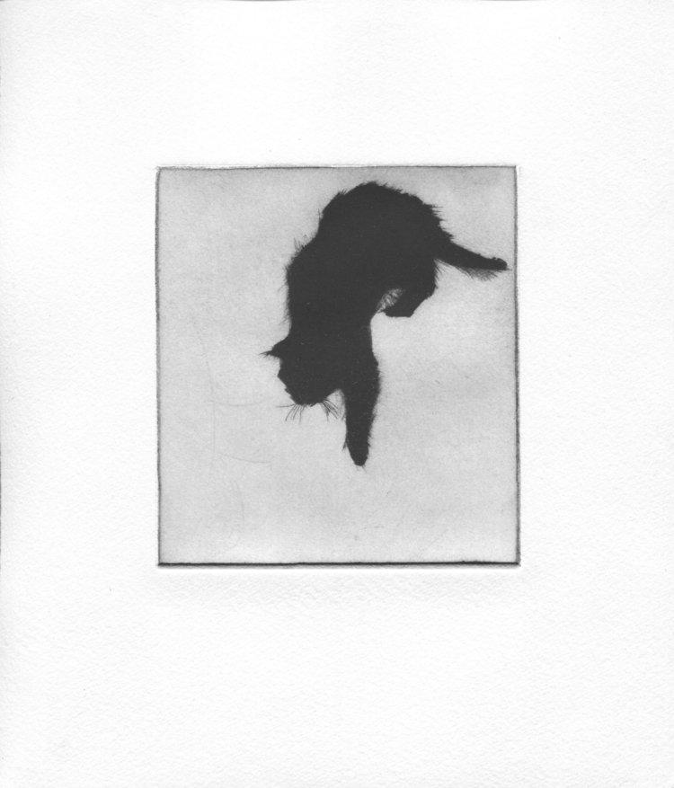 'Soames', Rachel Wingate, Mezzotint, 25 x 21 cm