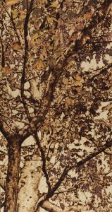 'Into the Leaves', Tilia Holmes, Pyrography and oil painting on wood, 39 x 21 x 2.5 cm