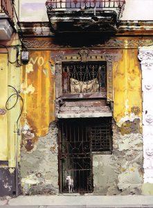 'Havana', Tony Feld, Oil on board, 45.5 x 36 x 2 cm