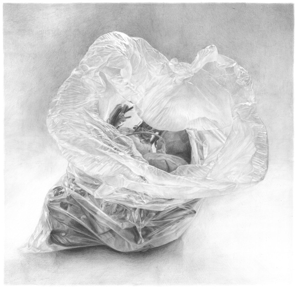 'Plastic bag with beets', Ilana Dotan, Pencil on paper, 50 x 50 x 1 cm