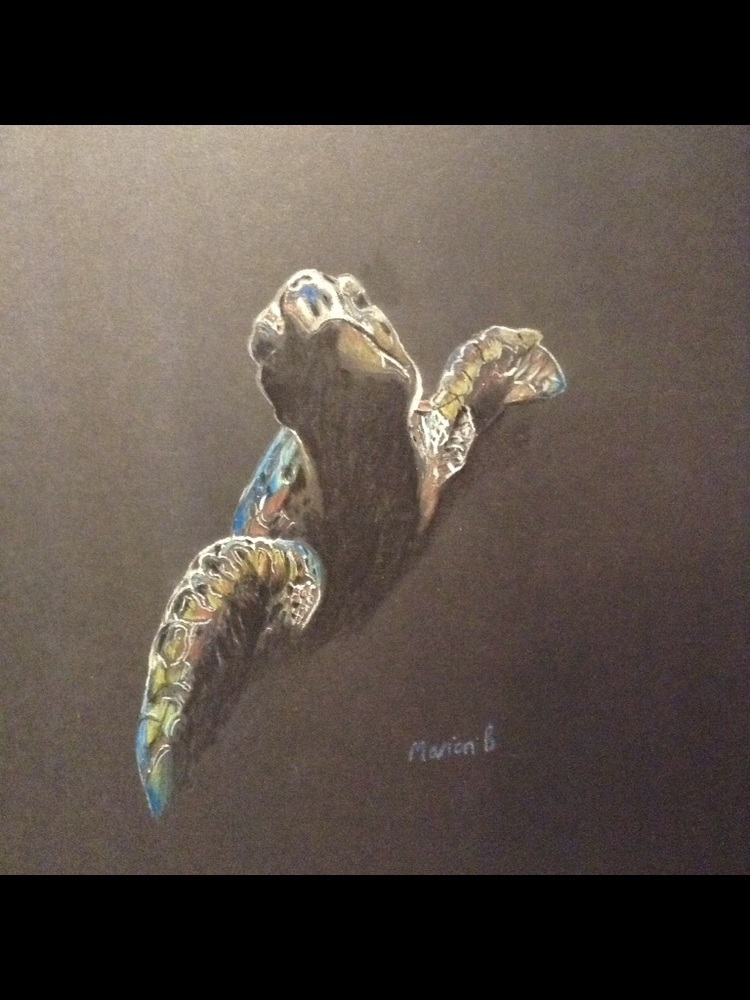 'Swimming Free', Marion Burton, Coloured pencils, 21 x 29.7 cm