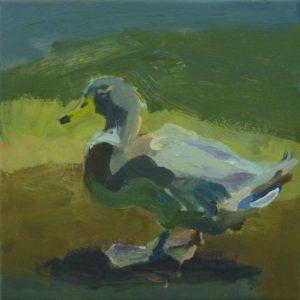 'Mallard, Slimbridge, Gloucester', Anna Dickerson, Acrylic on canvas, 35 x 35 cm