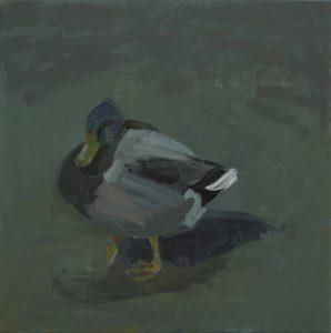 'Mallard, Sweden', Anna Dickerson, Acrylic on canvas, 60 x 60 cm