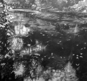 'Pond Life 2', Anny Evason, Graphite on paper, 110 x 110 cm