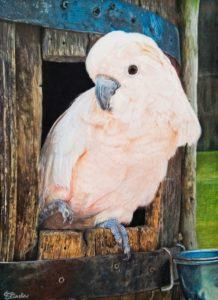 'Selly', Eliasha Tan, Pastel, 40 x 30 cm