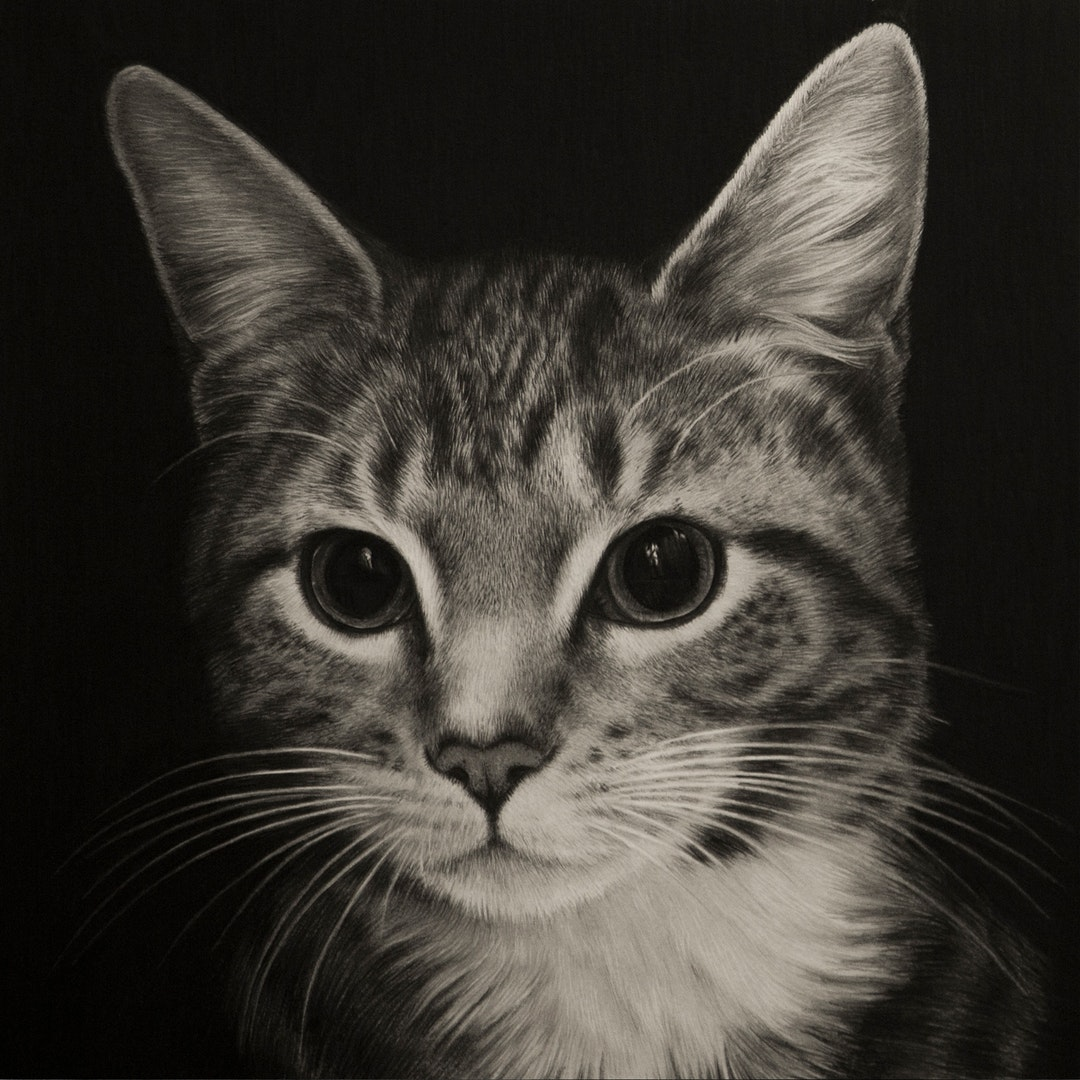 'Void', Emma Towers-Evans, Graphite pencil and black pencil on paper, 30 x 30 cm
