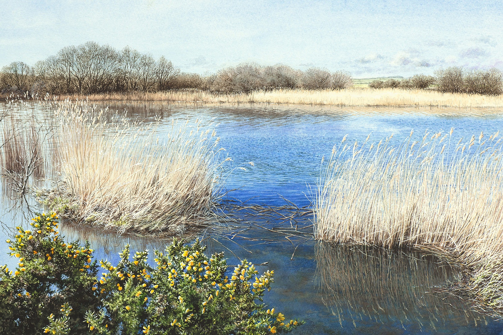 'Wind on the Wetlands', Felicity Flutter, Watercolour on paper, 24 x 36 cm