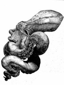 'Octopus by Ink', Fellipe Rinschede, Nankin pen on paper, 64 x 86 cm