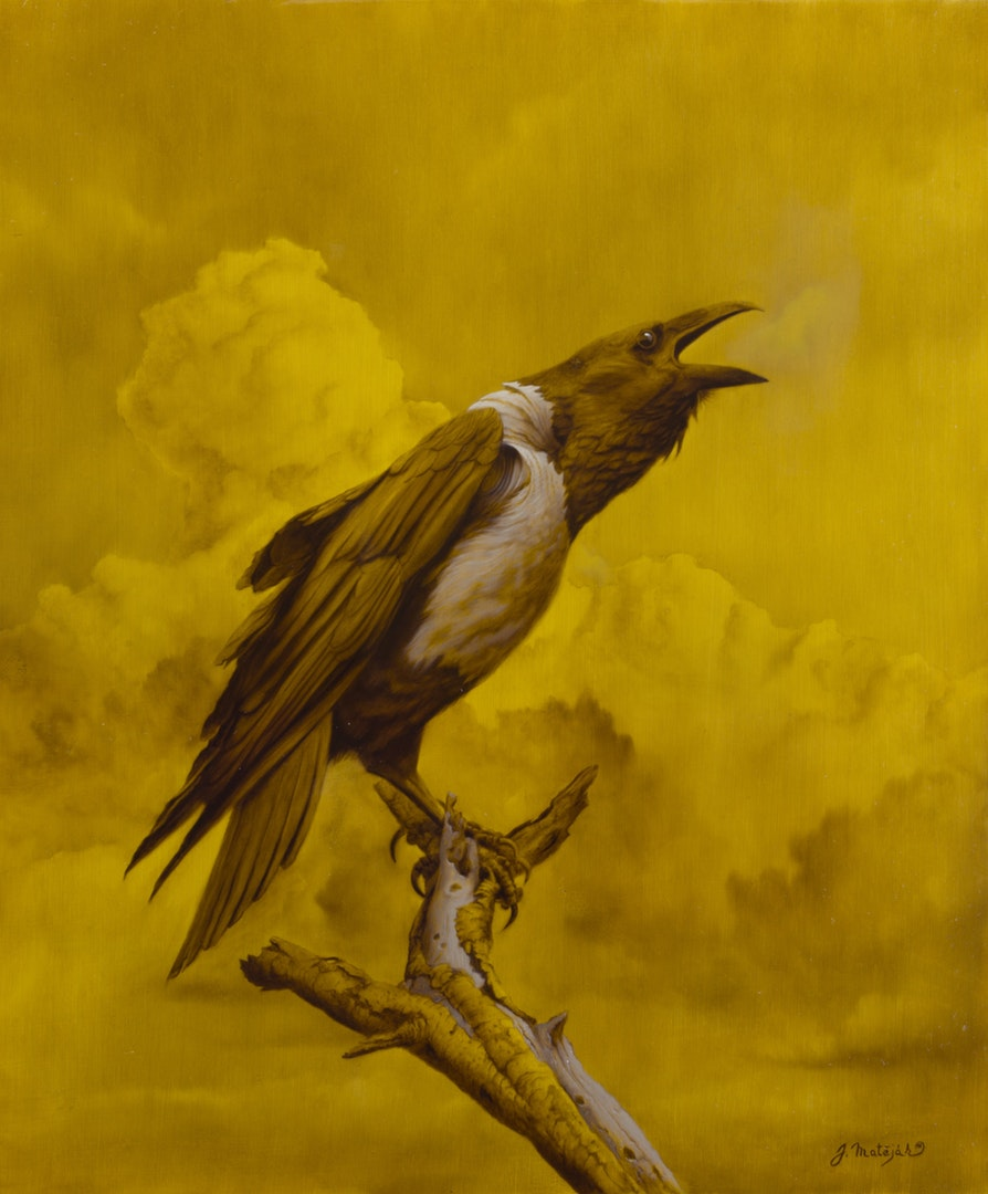 'Crow', Jan Matejak, Oil painting, 50 x 60 cm