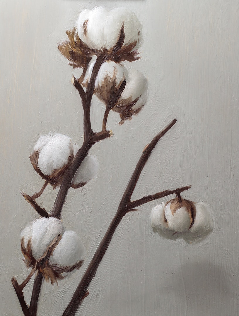 'Cotton Plant', Kevin Denoyette, Oil on lead primed aluminium panel, 26 x 20 cm