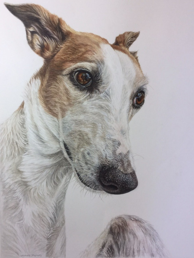 'Molly', Michelle Stephens, Watercolour and pencil on paper, 41 x 31 cm