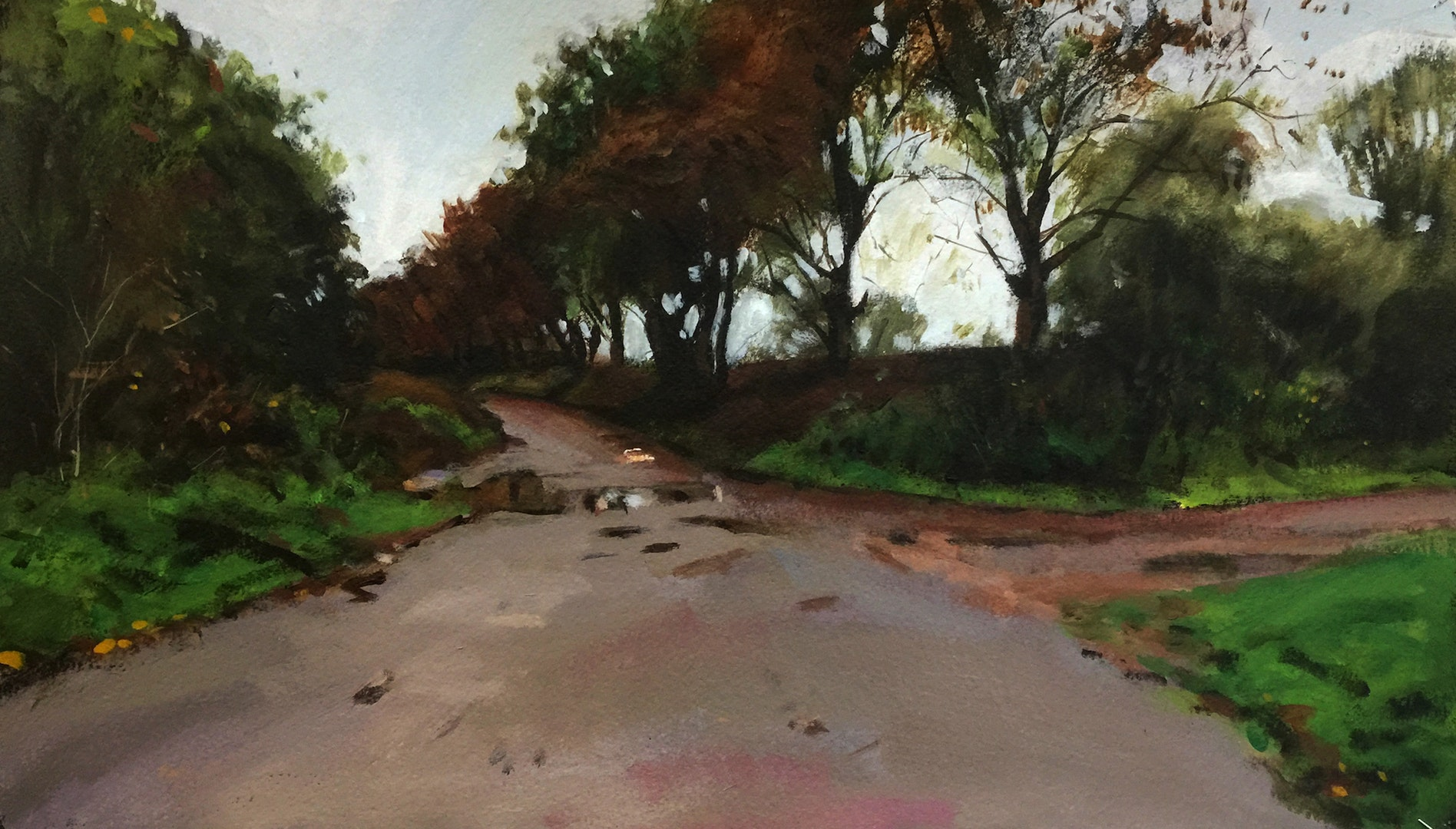 'Wash Lane I', Paul Regan, Acrylic on paper, 33 x 58 cm
