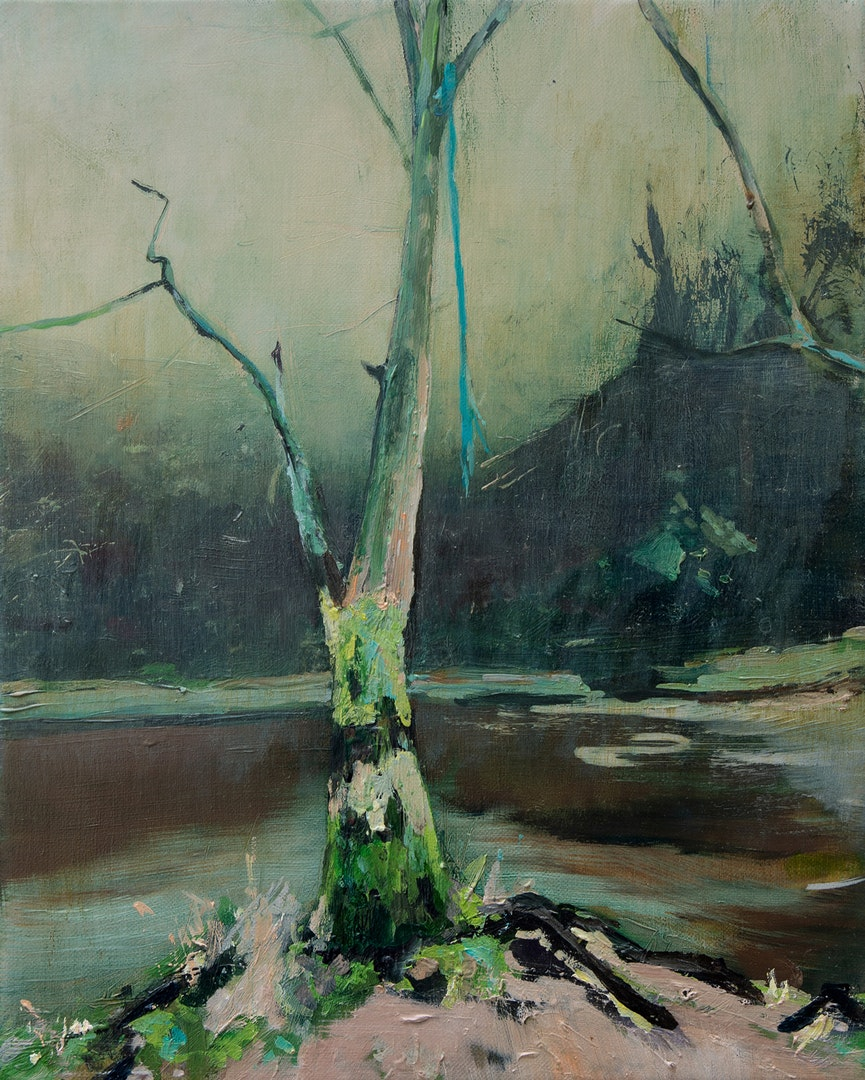 'The Dule Tree 2', Paul Smith, Oil on linen, 30 x 25 cm