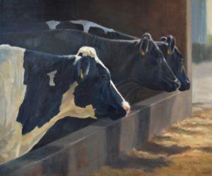 Sara Hodson. Cows, January. Longlist JPP 2020