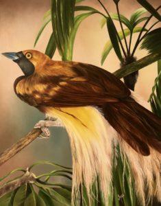 'Bird of Paradise', Sushmaya Yadav, Oil on canvas, 75 x 60 cm