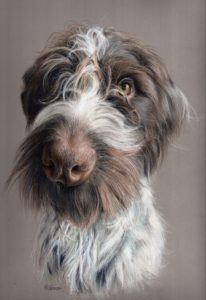 'Fergal', Trudy Harman, Pastel pencil on pastelmat, 29.7 x 42 cm