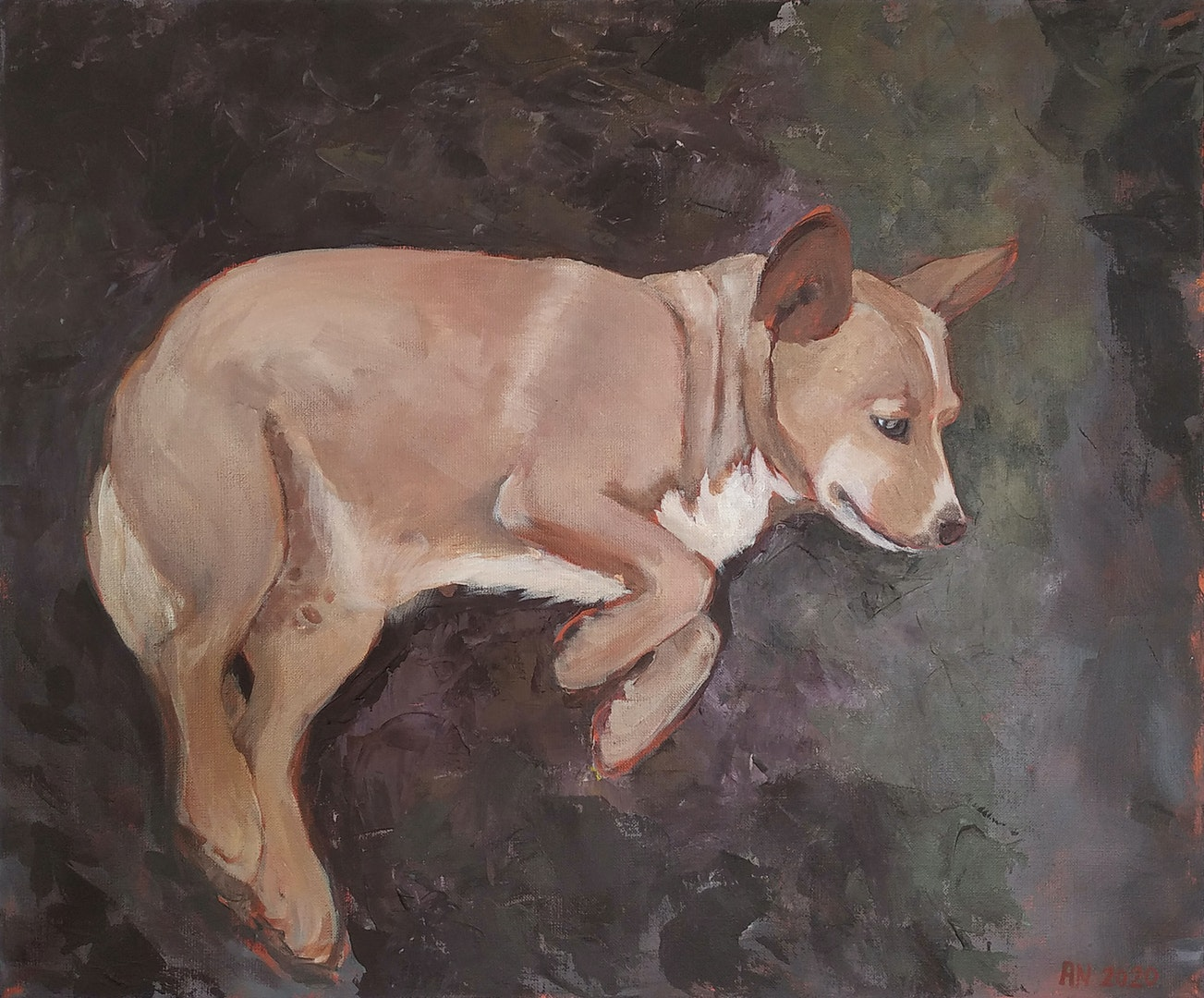 'Zuzia', Anna Sołtysik, Acrylic on canvas, 50 x 60 cm