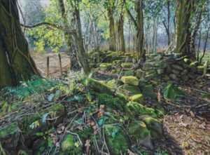 'Mossy wall in low sunlight', Bridget Derc, Soft pastels on pastelmat, 44 x 60 cm