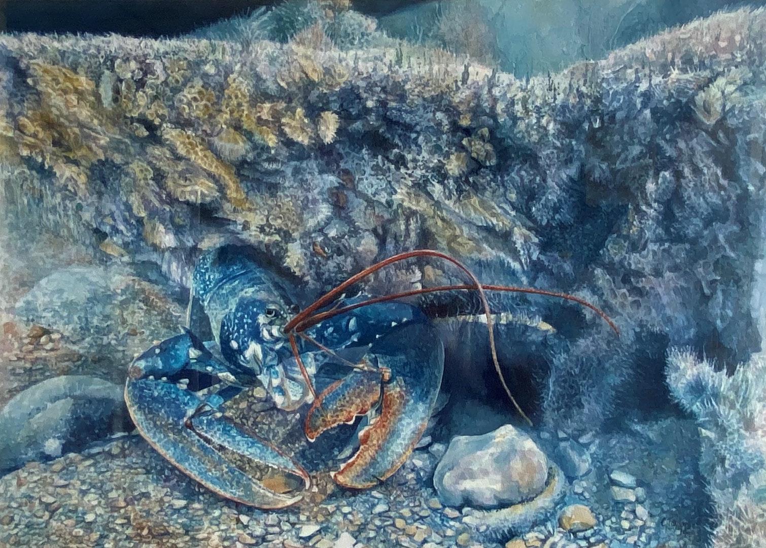 'Hide 'n' Seek', Cathy Taylor, Watercolour on paper, 51 x 71 cm