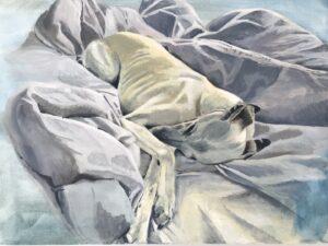 'Dog on Duvet', Claire Gurnett, acrylic on canvas, 40 x 30 cm