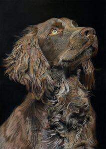 'Ludo', Michael Sheldon, Pastel on pastelmat paper, 70 x 50 cm