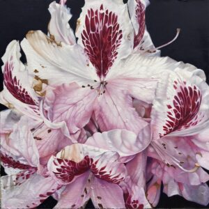 'Rhododendron, Massey Woods', Peter Homan, Oil and fire on canvas, 80 x 80 cm