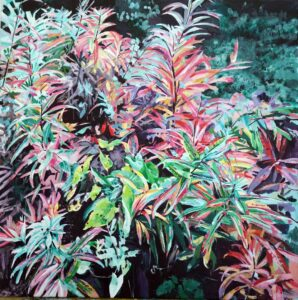 'Fireweed', Sophie Parr, Acrylic on canvas, 50 x 50 cm