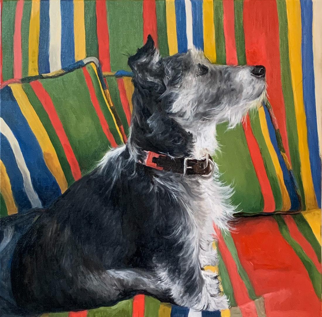 'Pepsi on the Technicolour Sofa', Virginia Cayzer, Oil on linen, 60 x 60 cm