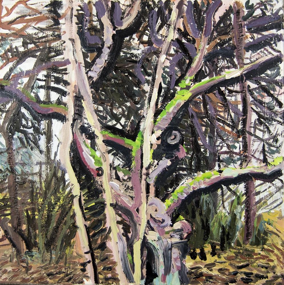 'Old apple tree', White star Faun Grzegorz Bugaj, Acrylic on linen, 51 x 51 cm